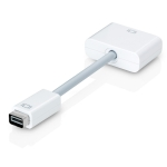 Apple mini DVI to DVI Adapter (M9321G/B)