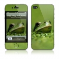 GelaSkins Tree Frog Poking Out Of A Pond for iPhone 4