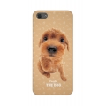 Qual THE DOG Back Cover for iPhone 5, 5S - Poodle (QL1111PD)