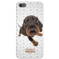 Qual THE DOG Back Cover for iPhone 5, 5S - Dachshund (QL1111DH)