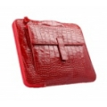 Collega Red for iPad